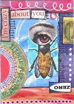 Crazy 1-Eye Fly